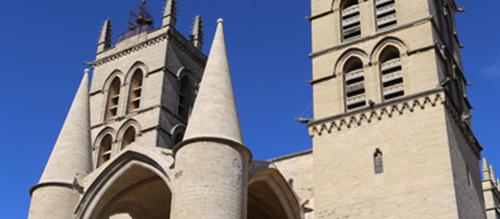 Visites de la cathédrale Saint Pierre